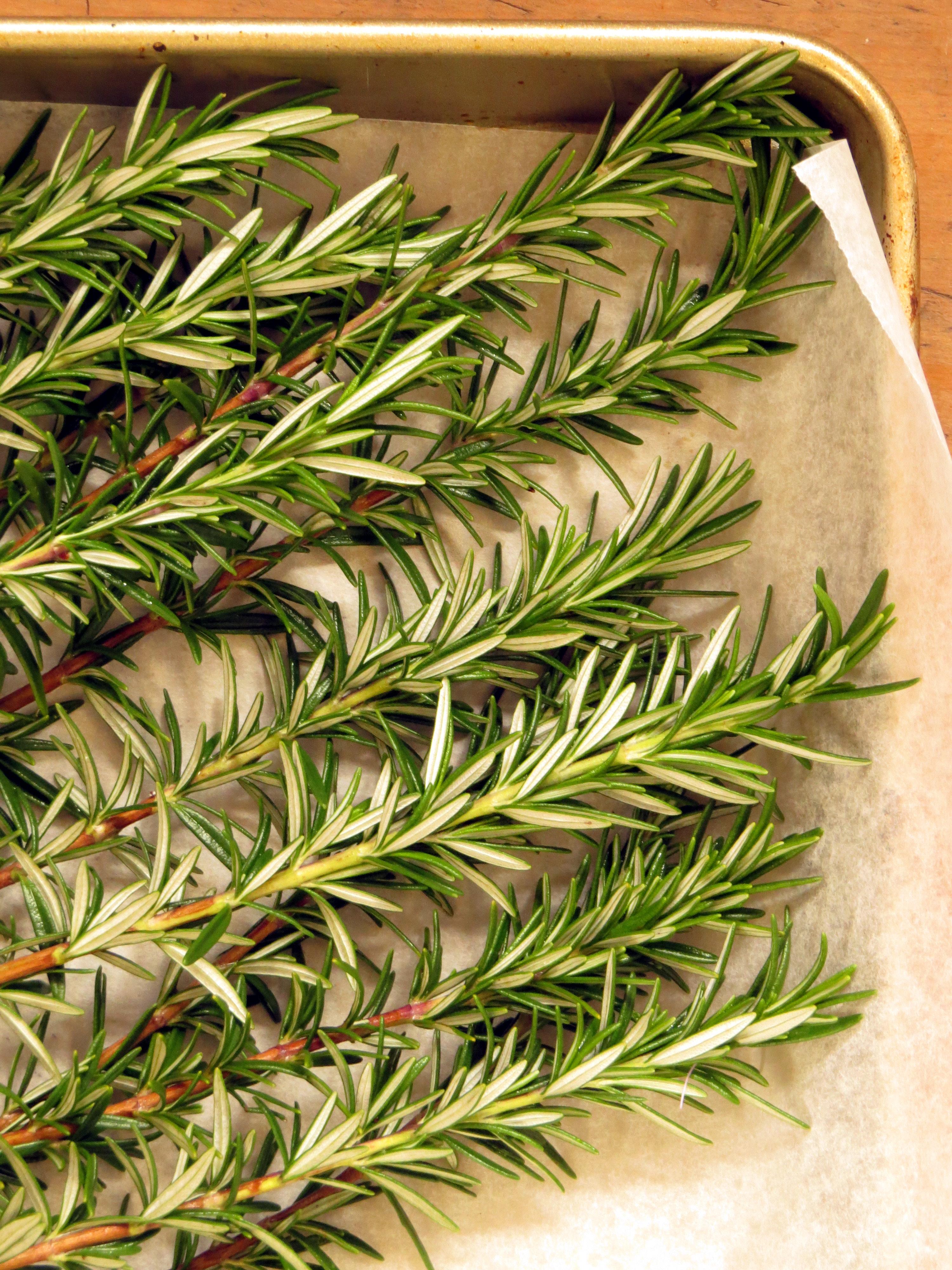Preserving fresh herbs: rosemary & parsley | Rediscover